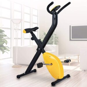 loinrodi Foldable Upright Exercise Bike