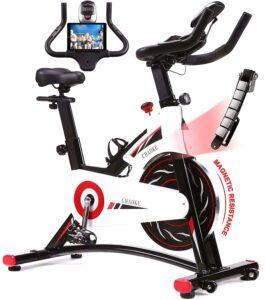 CHAOKE Indoor Cycling Bike -Silent Stationary Bike